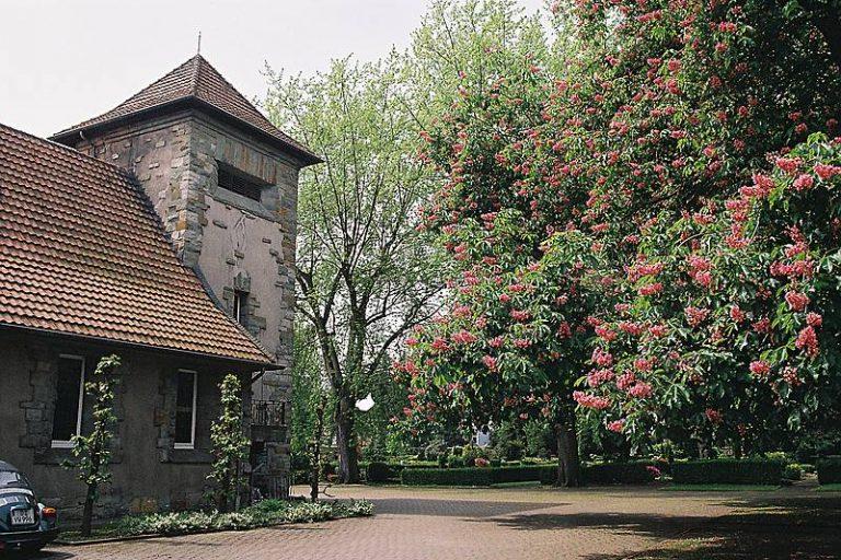 Der Evangelische Friedhof in Rheydt